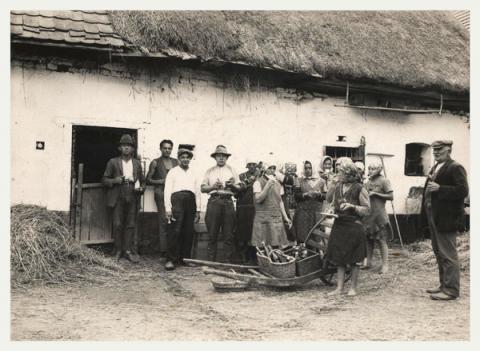 30. léta minulého století, svačící obsluha parní mlátičky skryté ve stodole